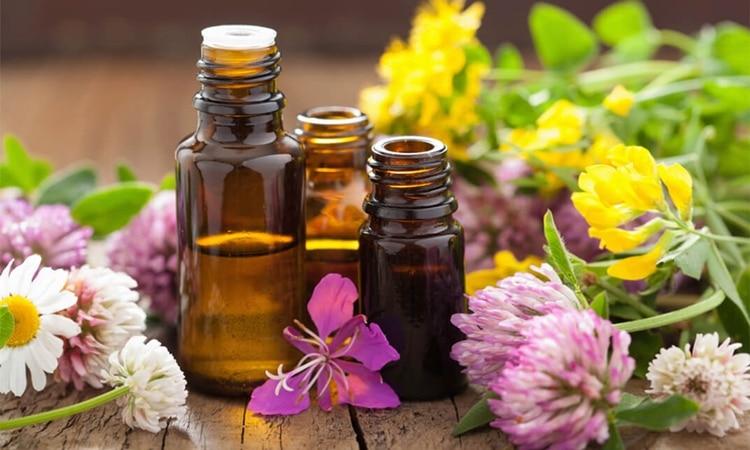 aromatherapy la gi