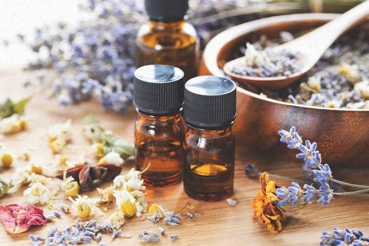 lich su aromatherapy la gi