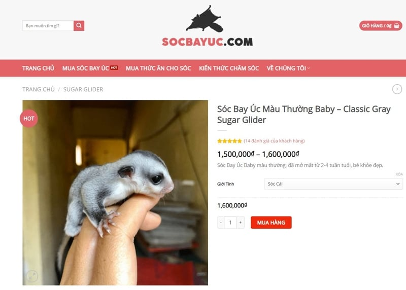 socbayuc com cua hang soc bay uc