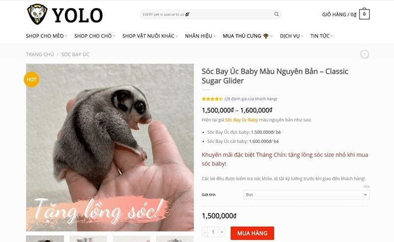 yolo pet shop chuyen ban soc bay uc